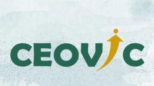 CEOVIC-đơn vị tạo logo tại Hải Phòng uy tín và chất lượng