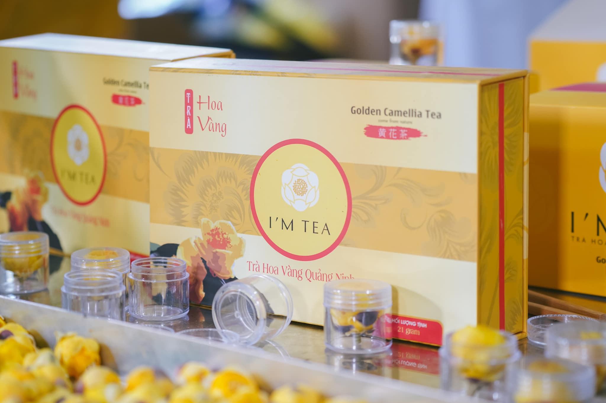 Thiết kế bao bì sản phẩm trà hoa vàng Quảng Ninh